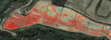Mapa de vigor con infrarrojos para agricultura de precisión.